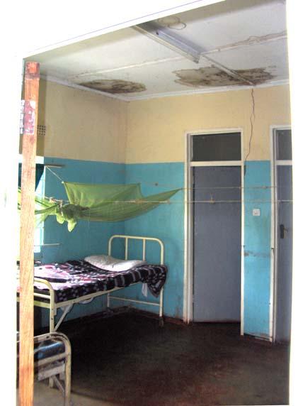 Ward Ceiling 2